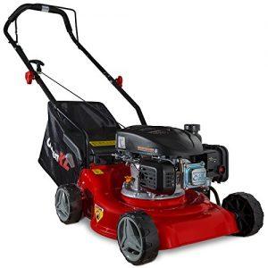 Quanto Costa gartenxl tosaerba a benzina 16lp 123 s con motore larghezza di taglio 40 cm