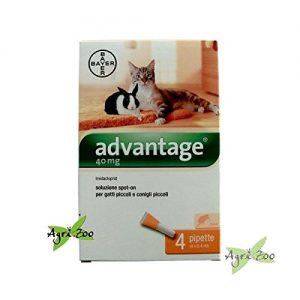 Quanto Costa advantage bayer 84329097 spot on gatto 40 mg