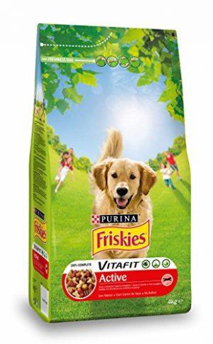 Quanto Costa friskies cane secco active 4000 gr