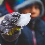 Eventi per Bambini a Roma inverno 2019: alberi danzanti e Supermagic - RomaWeekend.it