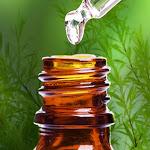 Olio tea tree: 44 modi su quando e come utilizzarlo - Ambiente Bio