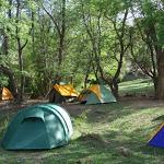 Turismo, camping sardi saranno 'green': arriva la certificazione di sostenibilità - SardiniaPost