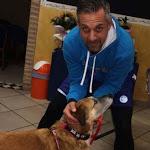 """Un sostegno concreto con la racchetta in mano - TENNIS ROVIGO Prosegue a ritmo serrato la manifestazione benefica in favore del rifugio per animali """"Citta' degli Angeli"""" - RovigoOggi.it"""